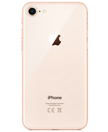 iPhone 8 256GB FoneBucks